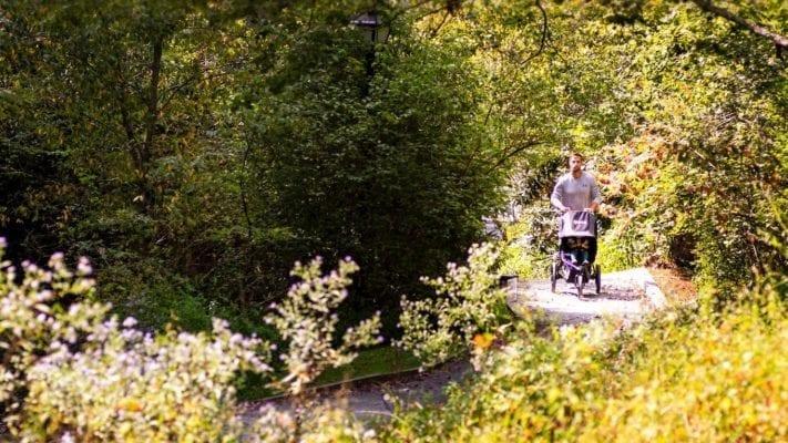 bob flex vs bob flex 3.0 jogging strollers